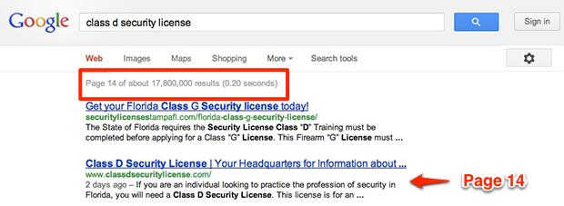 Class D Security License
