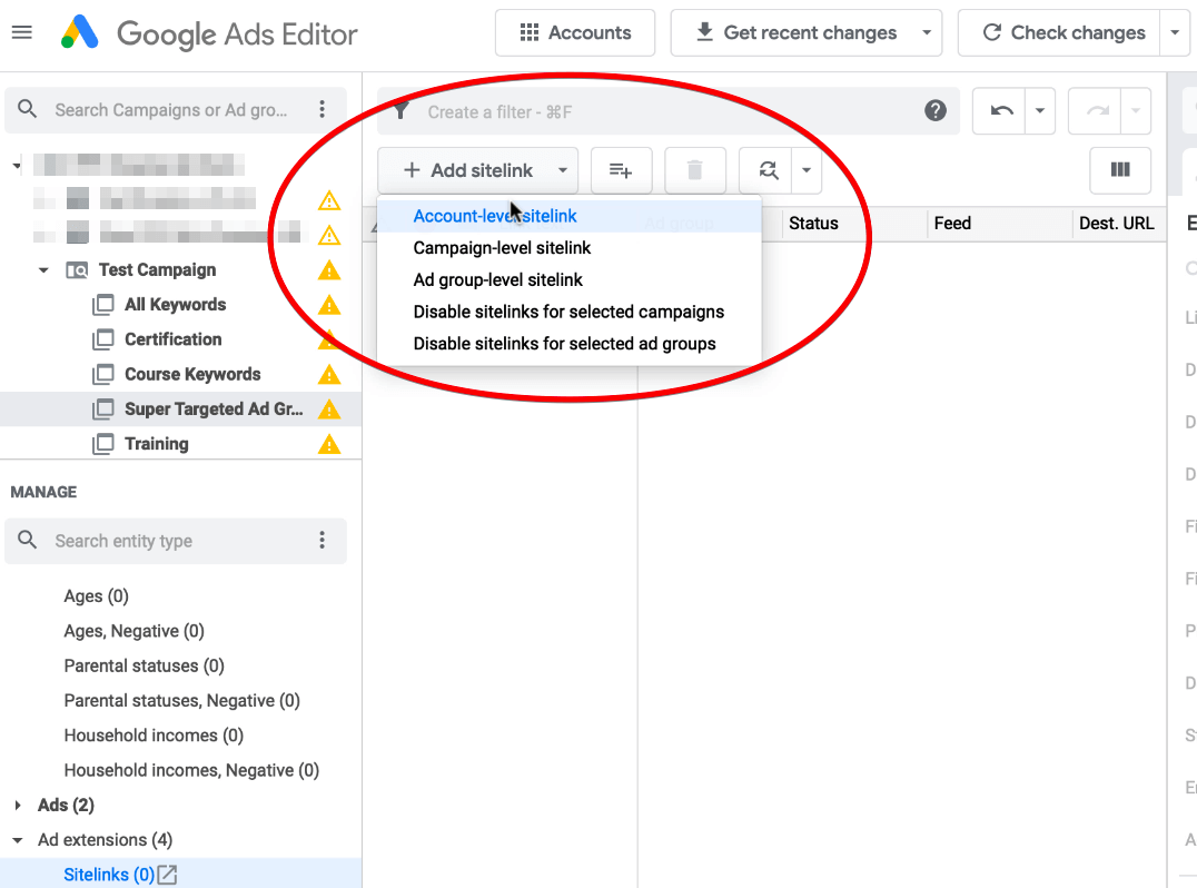 Creating Ad Extension in Google Ads Editor