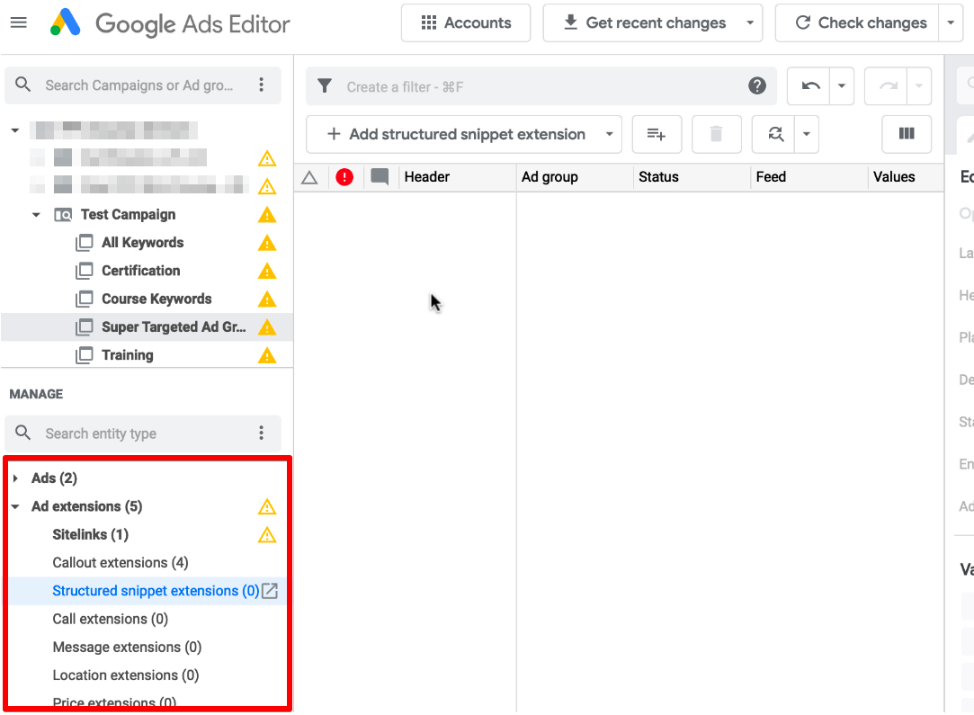 Ad Extensions in Google Ads Editor