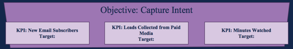 Marketing Objectives - Capture Targets