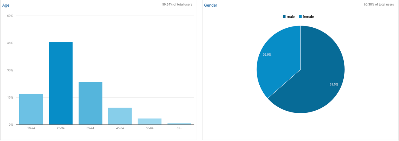 google analytics demographics reports and charts